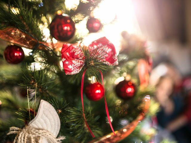 Wierd Christmas Ornament.6 Wonderfully Weird Christmas Tree Ornaments Thenest Com