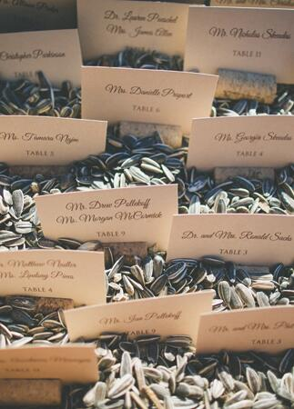 Sunflower Seed Escort Cards | The Shultzes | The Knot Blog