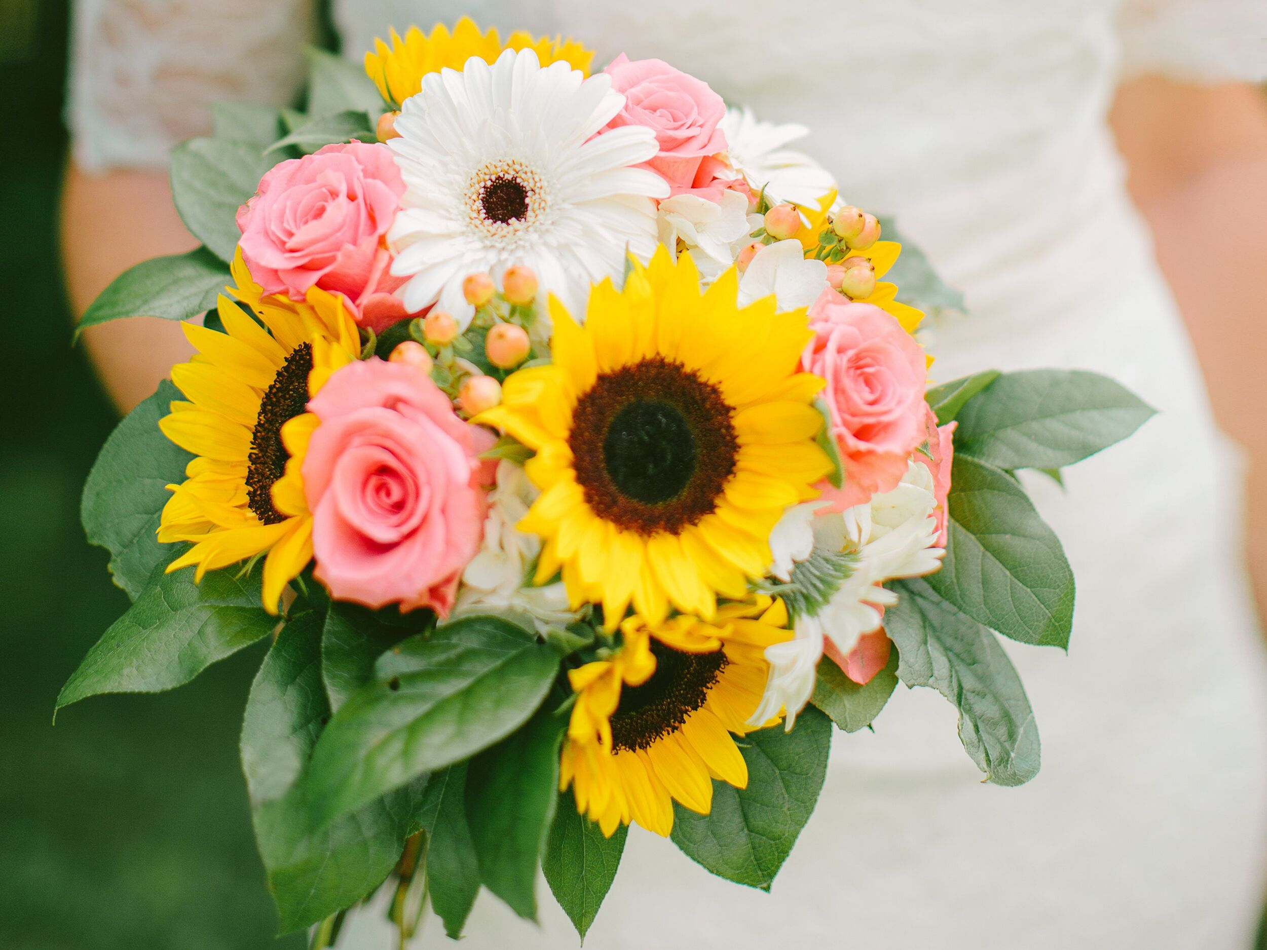 10 inexpensive flowers youll love izmirmasajfo