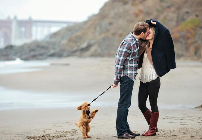 Engaged couple with poodle