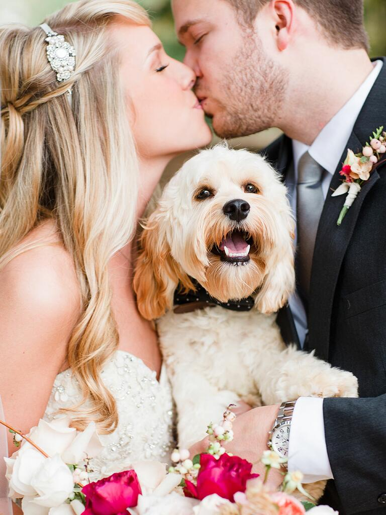 Bride and groom kiss holding a dog