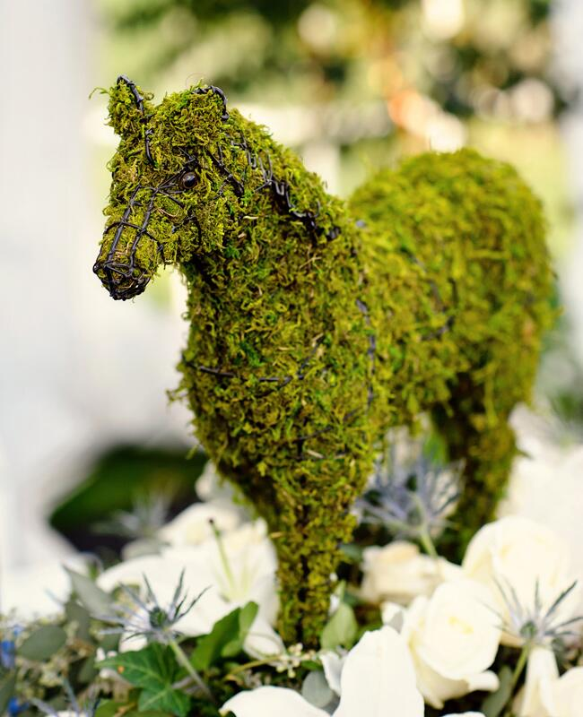 Animal Wedding Ideas