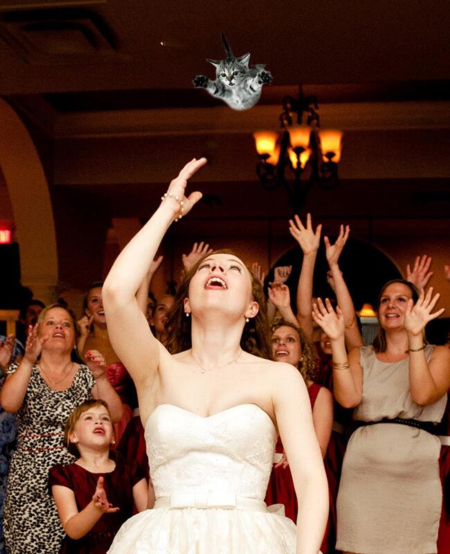 Brides throwing cats is the hottest internet meme right now for Bouquet internet