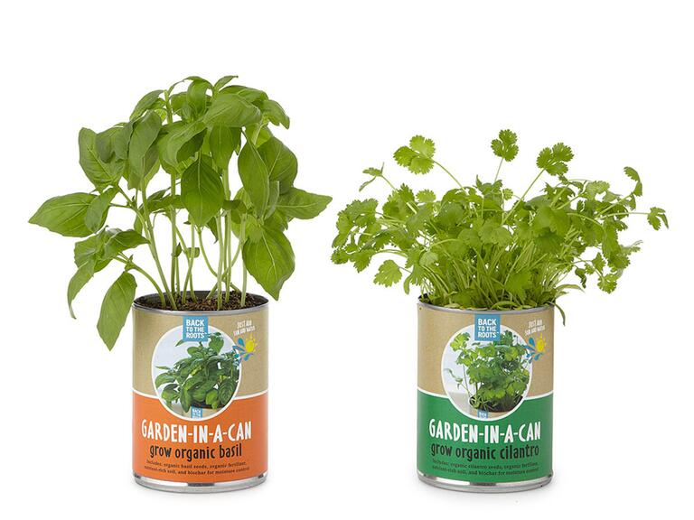 Garden in a Can herbs