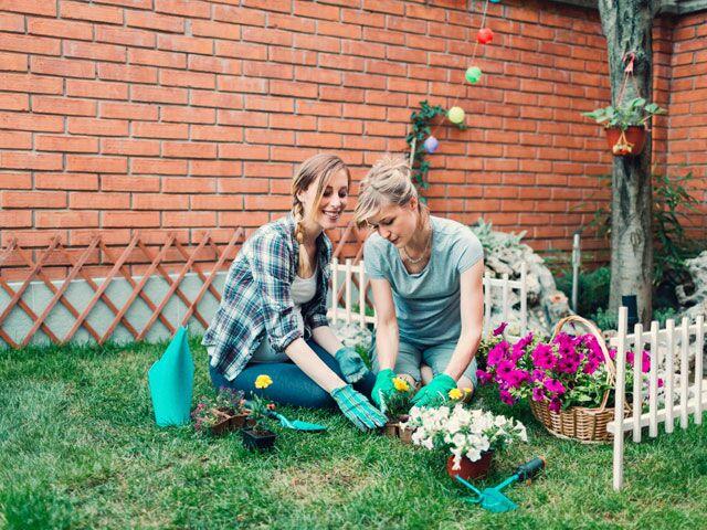 Garden Tools Gardening Essentials Thenest Com