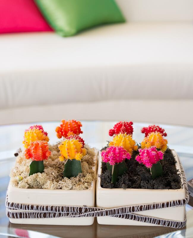 Bright Neon Cactus Centerpieces