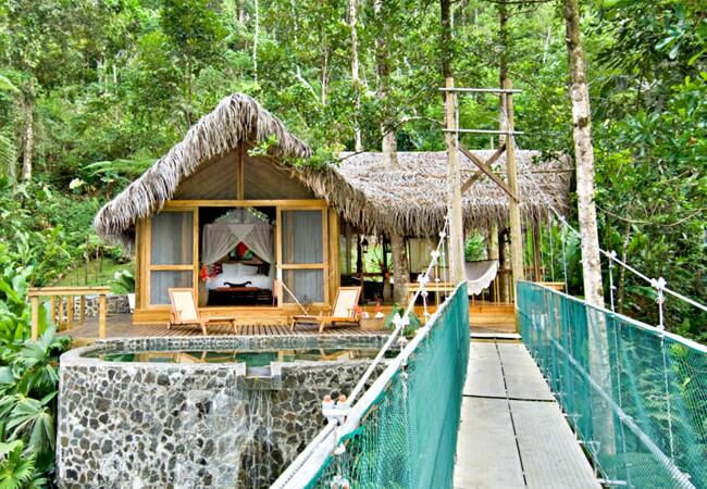 5 dream tree house honeymoons for Tree house costa rica