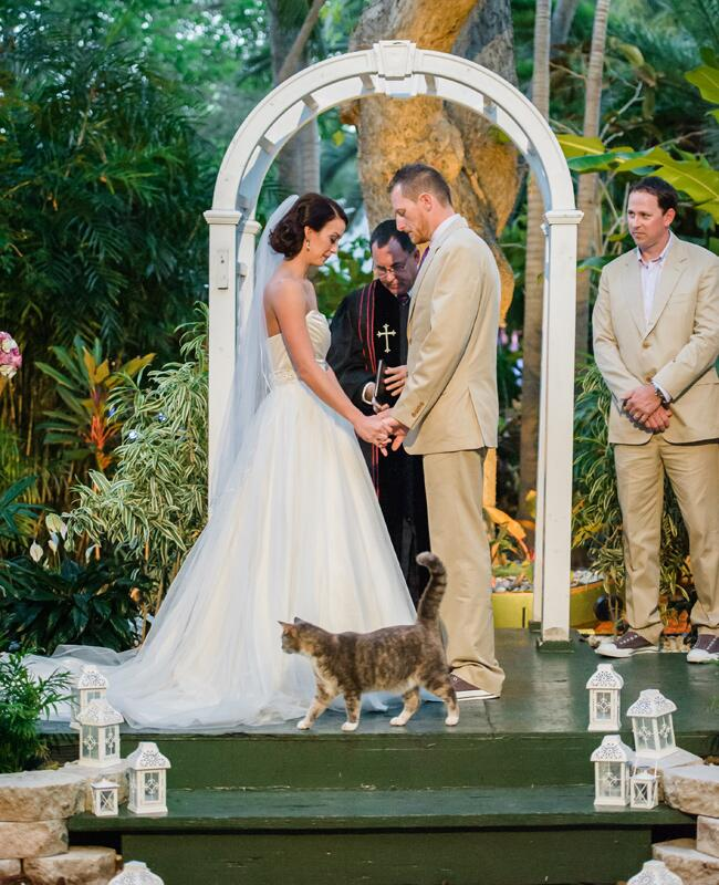 Unexpected Animal Wedding Photos