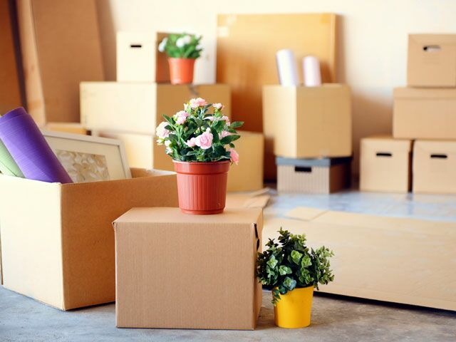 Moving From An Apartment To A House How To Move From An Apartment To A House