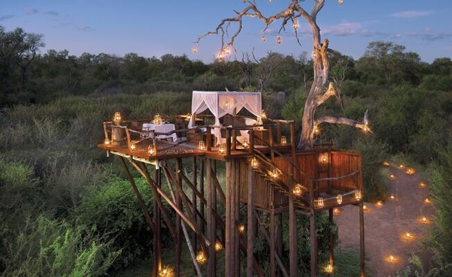 instead of the typical honeymoon suite reserve a tree house no seriously gorgeous tree house hotels and bungalows are popping up in far flung - Treehouse