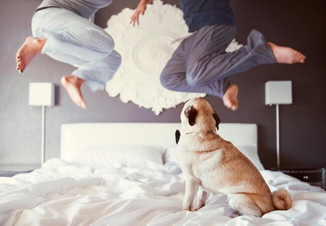 Engagement Photos with Dogs: Chelsea Nicole / TheKnot.com