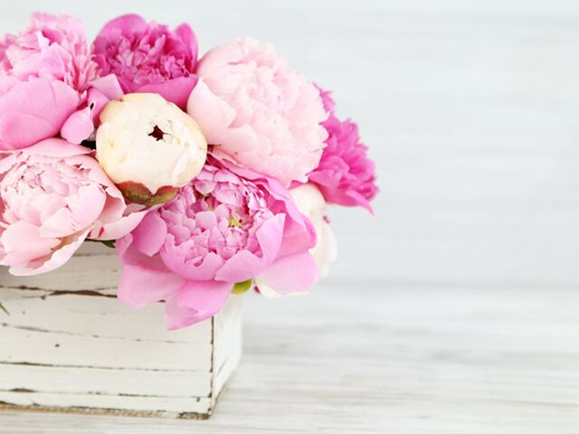 How to Keep Those Peonies Gorgeous All Summer Long