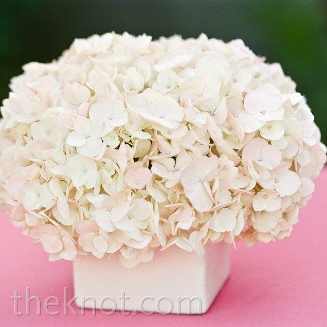 White Wedding Gown Hydrangea: White Hydrangea Centerpieces
