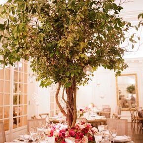 Garden wedding centerpieces whimsical garden inspired tree centerpieces junglespirit Choice Image