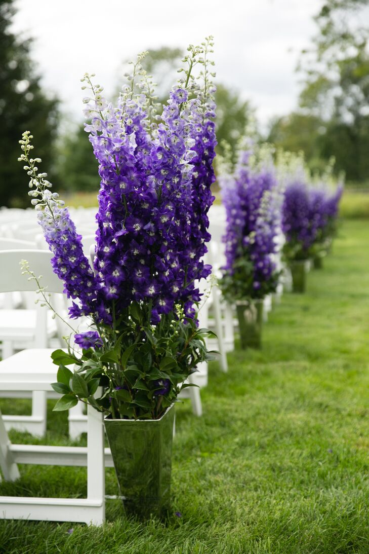Tall flowers provided a vibrant pop of purple down the aisle in Emily's backyard.