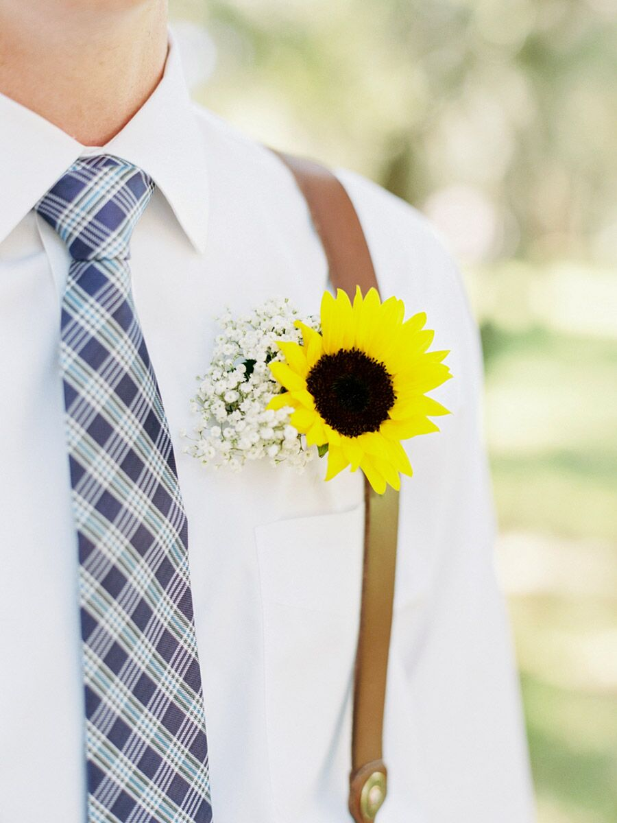 Sunflower Trends