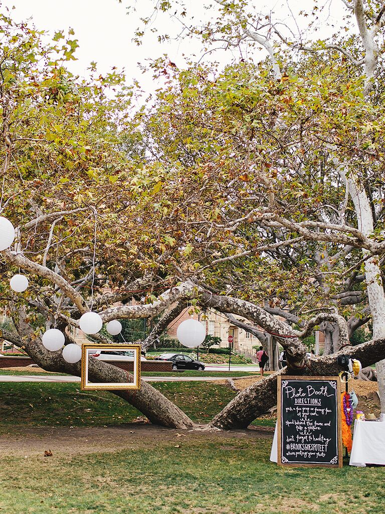 Photo Booth Idea For An Outdoor Wedding Hanging Frames From Tree Branches
