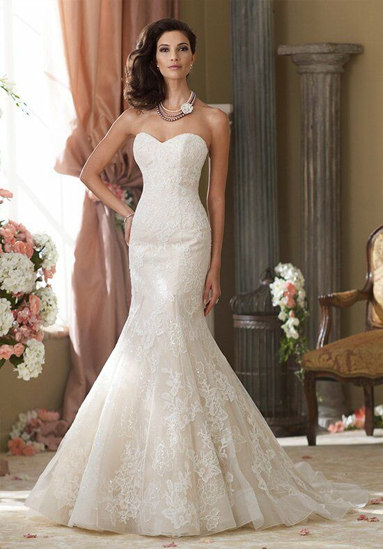 David Tutera for Mon Cheri 214211 Sanya Wedding Dress photo