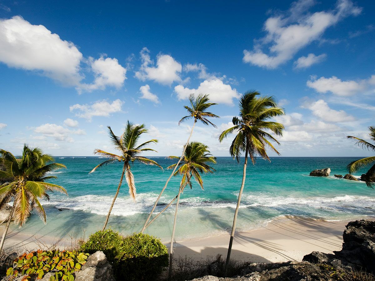 caribbean and barbados A tiny island in the east caribbean, barbados is a truly diverse destination at only 21 miles long and 14 miles, you can explore all this island has to offer during your vacation.