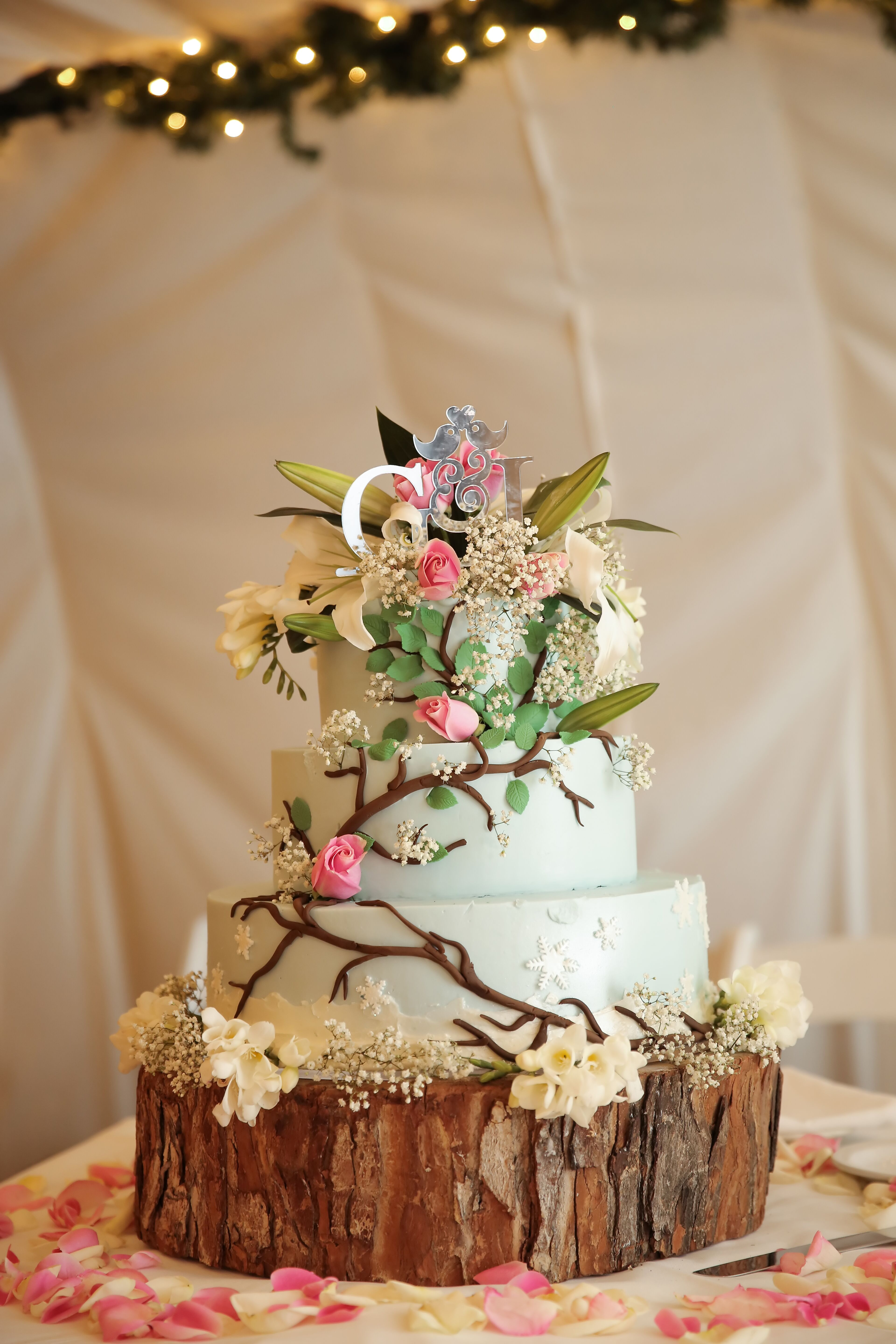 Light Blue Wedding Cake With Vines And Flowers