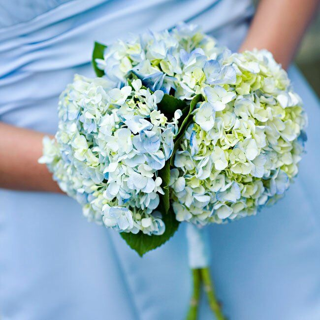 Blue Hydrangea Wedding Flowers: Blue Hydrangea Bouquet