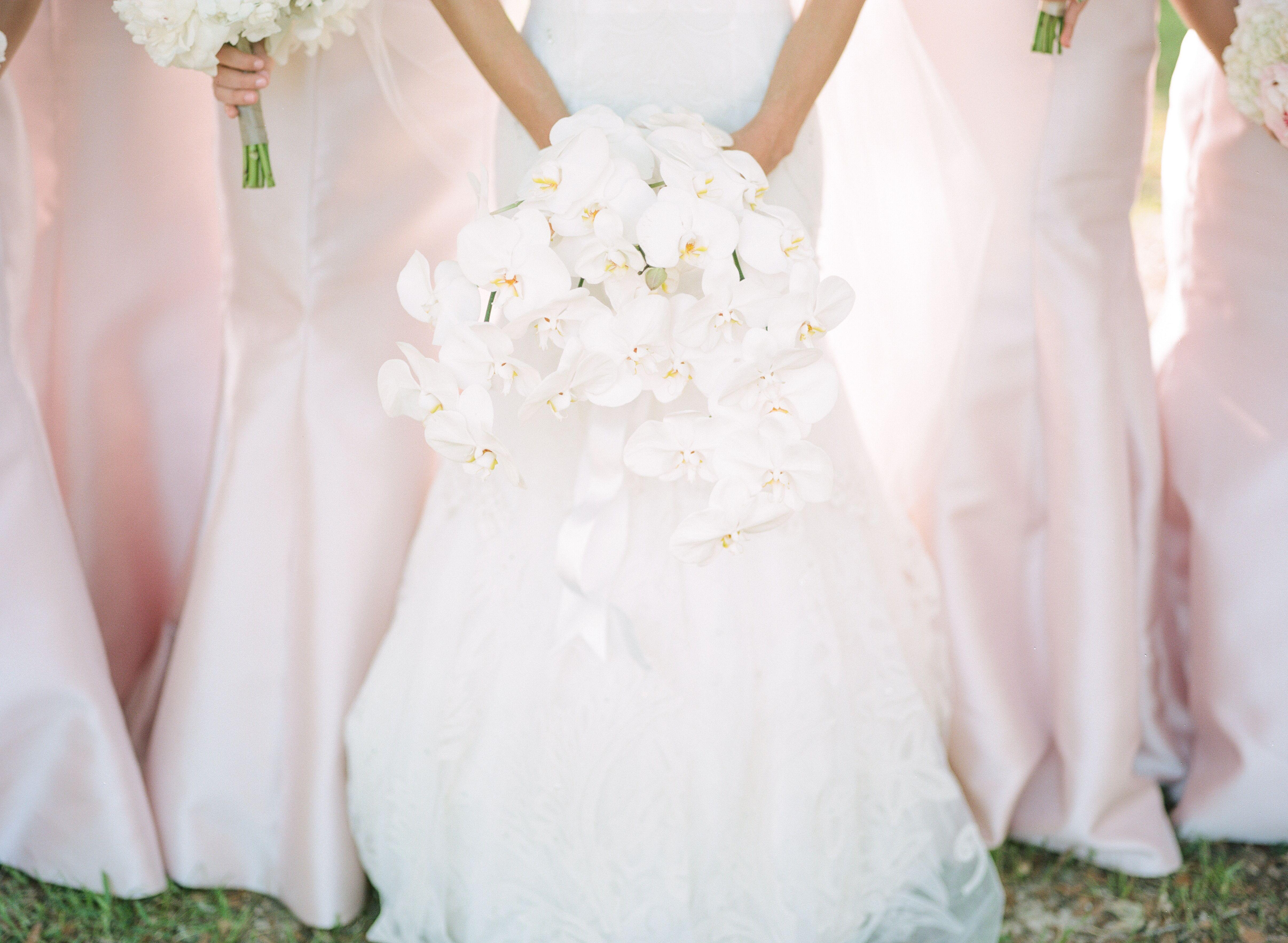 Tamras OC Wedding  Wikipedia