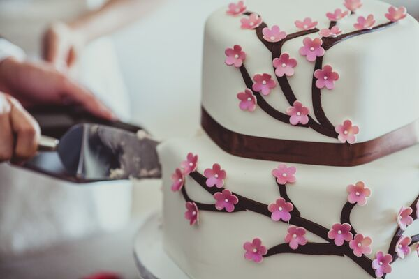 Cutting Ivory Cake With Branches