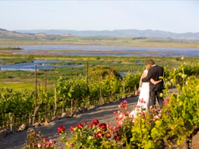 Vineyard Weddings in Sonoma