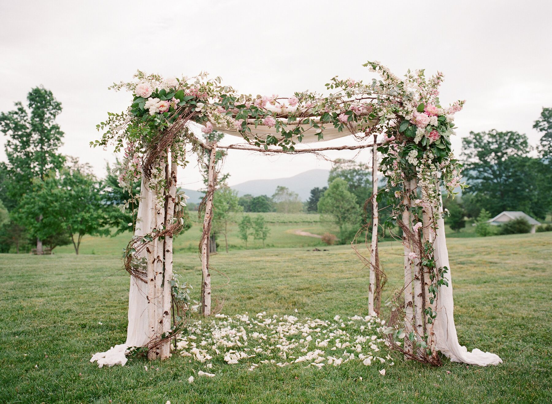 White Birch Tree Wedding Decorations