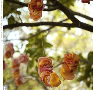 Multicolored rose petals on string were hung from the magnolia tree beneath which the couple exchanged traditional vows.