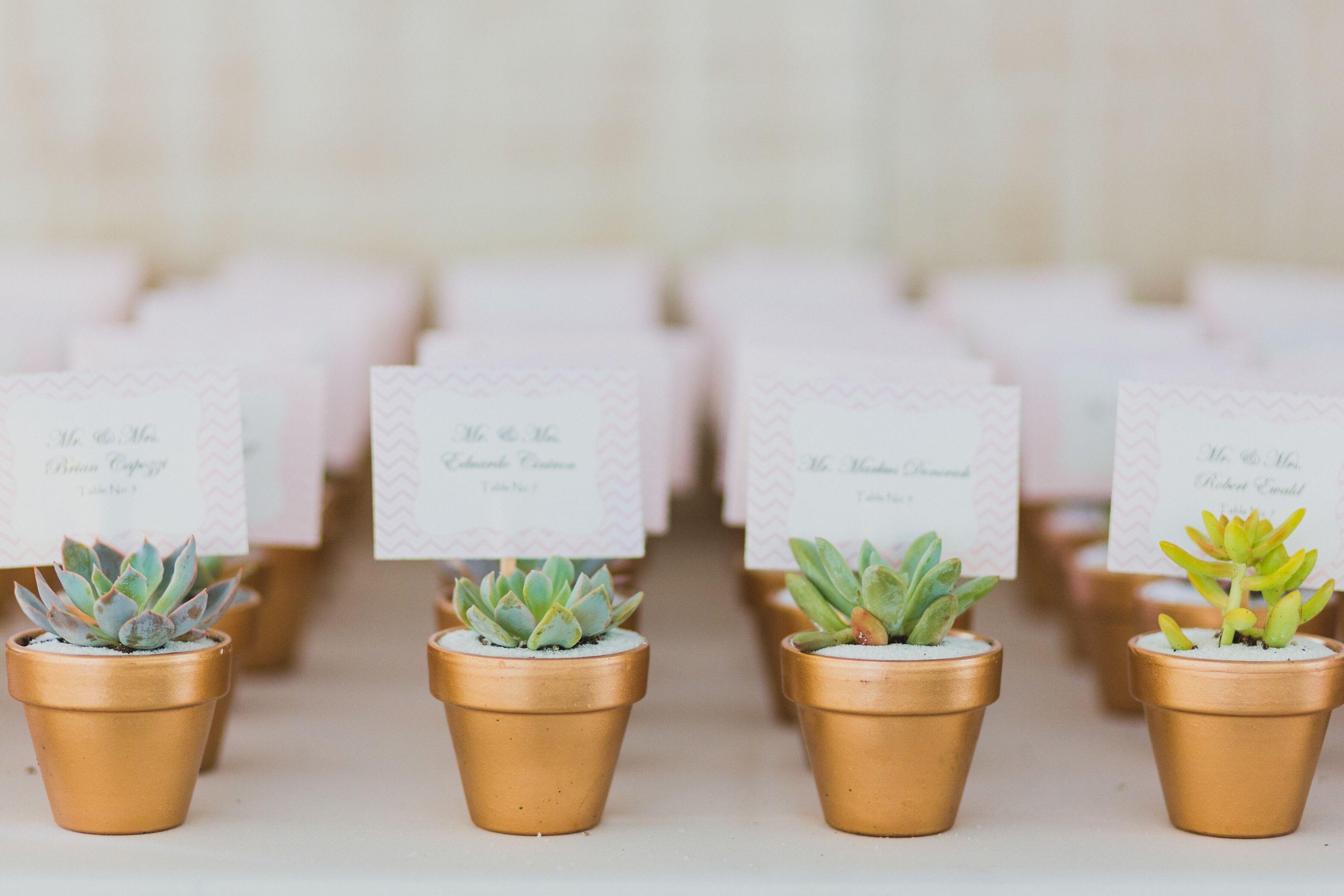 Succulent Escort Cards in Gold Pots
