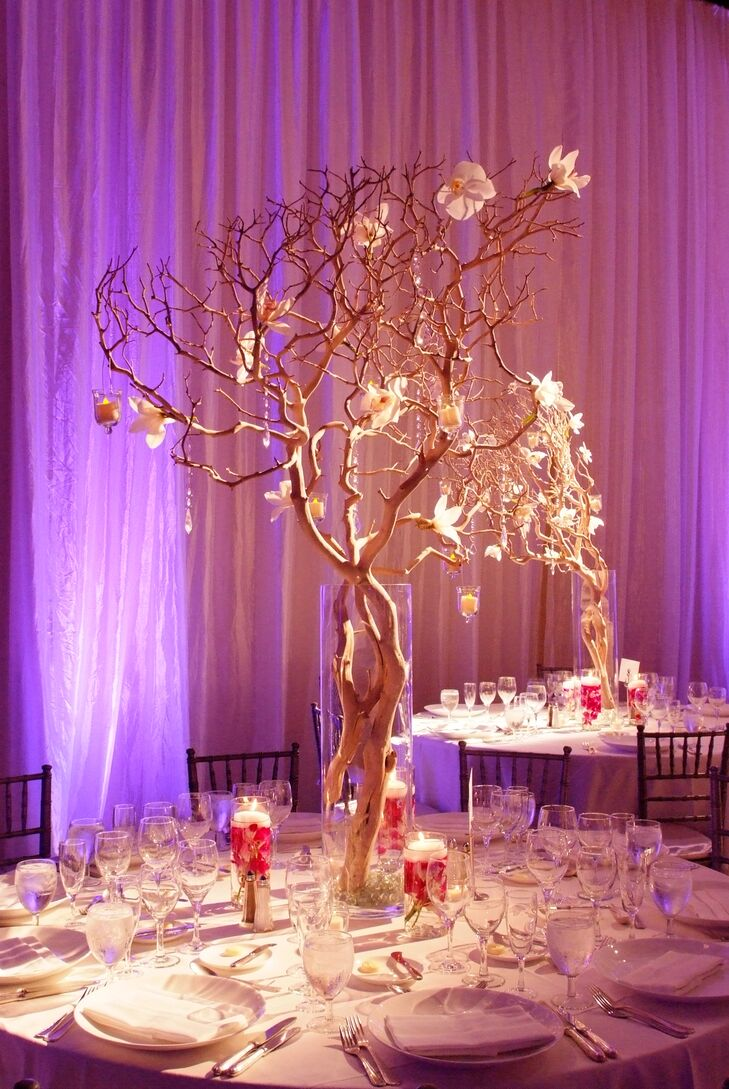 Elegant Illuminated Branch Centerpieces With White Orchids