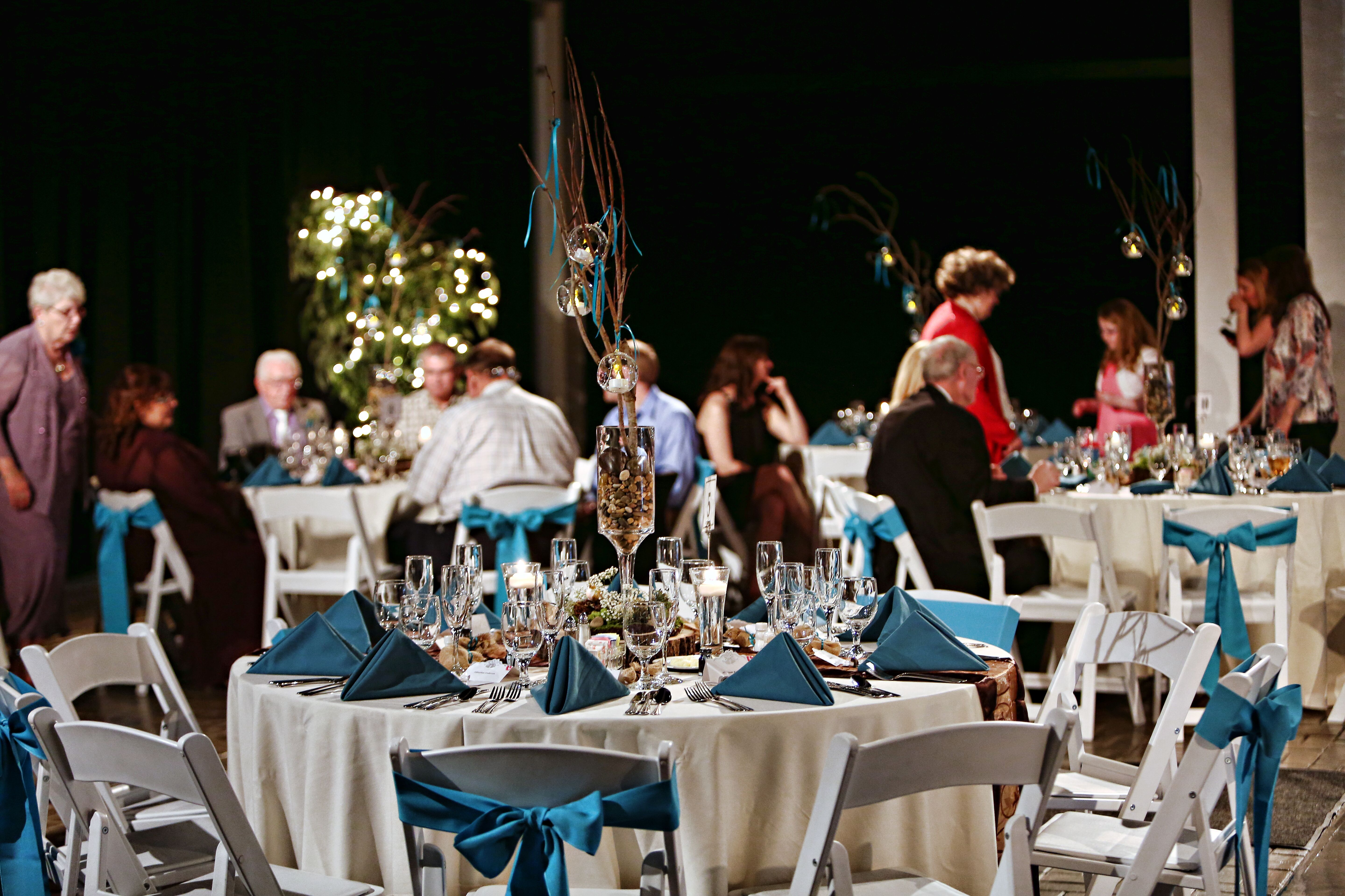 Chocolate And Teal Wedding Reception: Deep Teal And Brown Outdoor Reception Decor