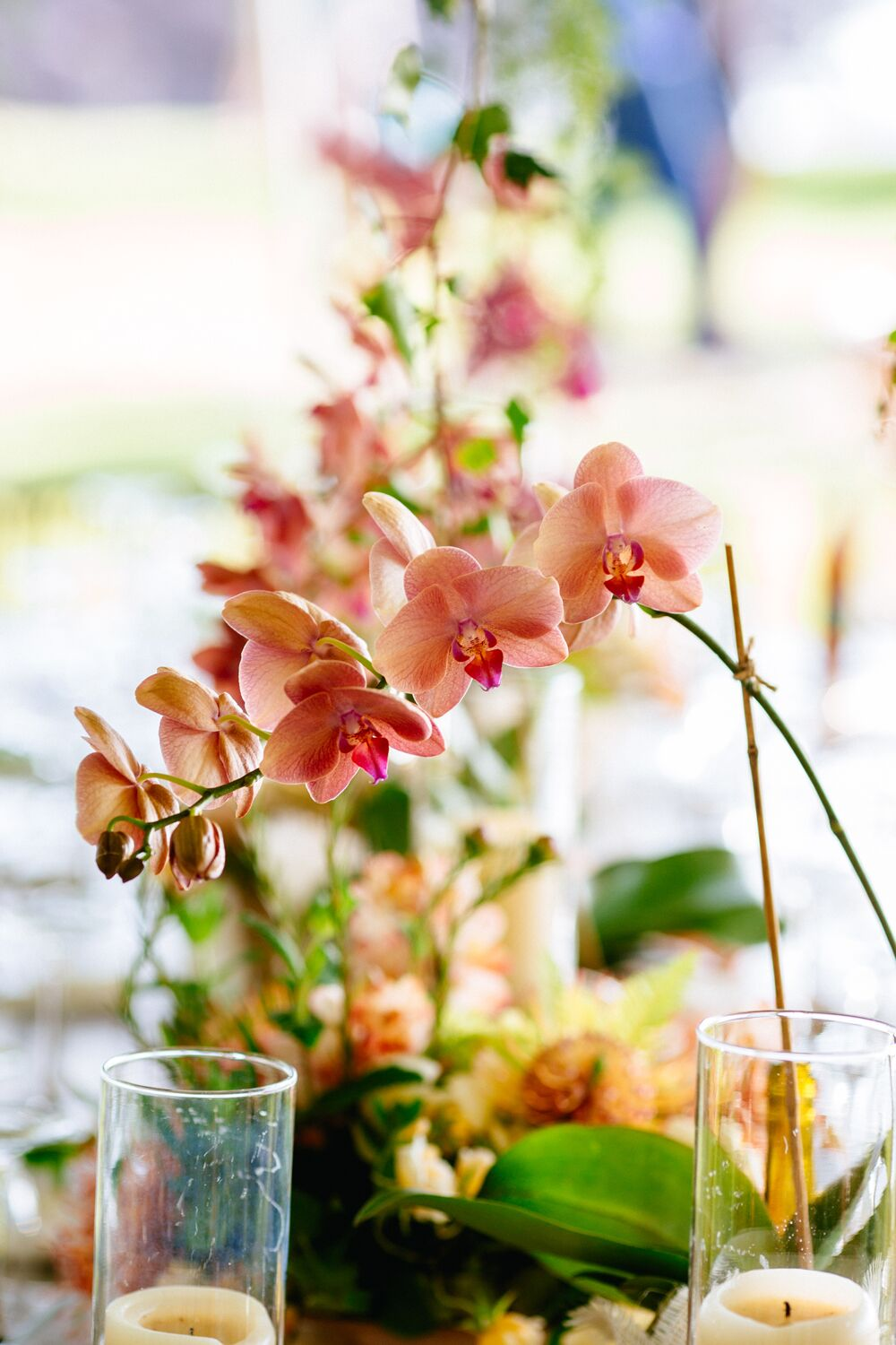 Coral pink orchid centerpiece