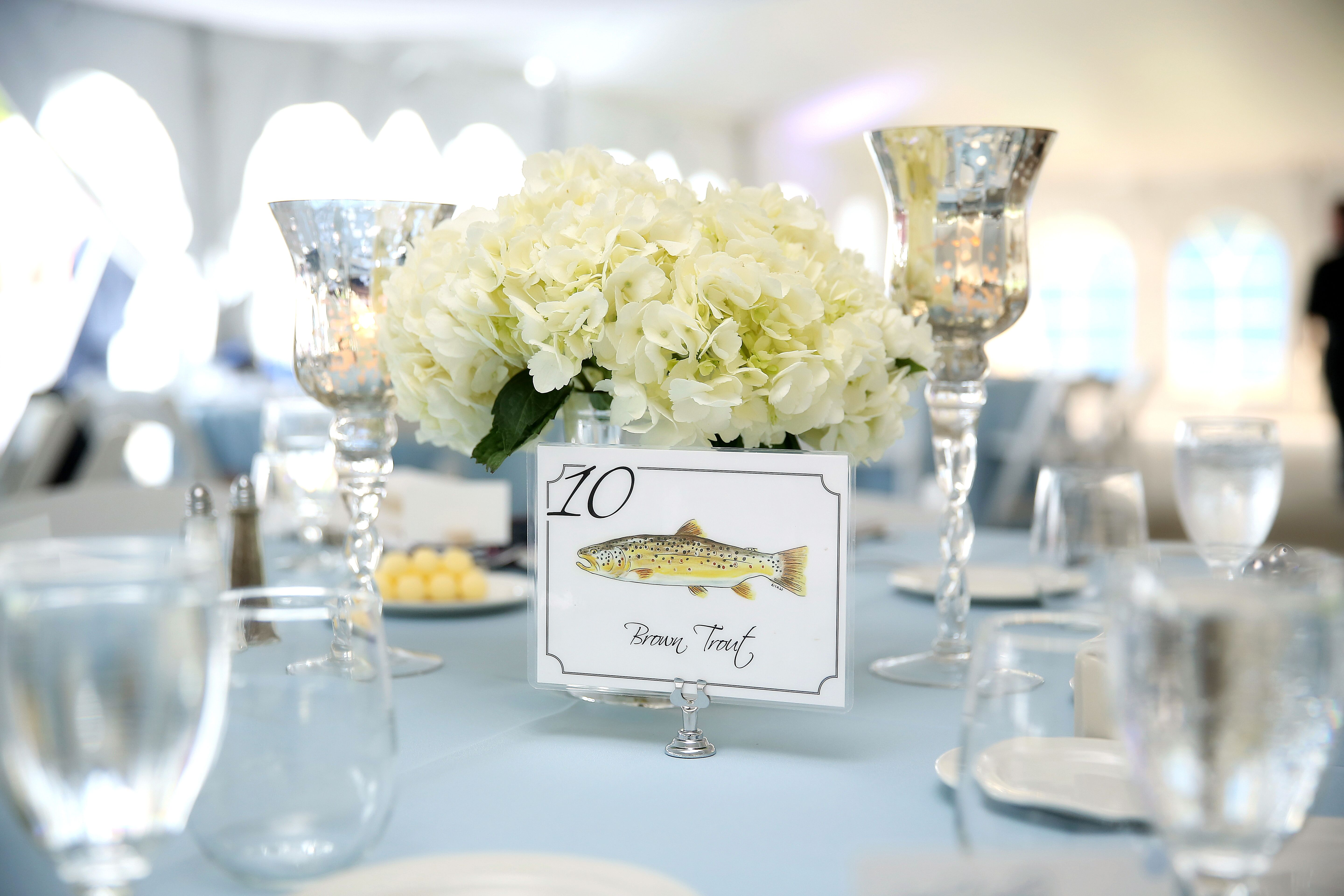 Fish-Themed Table Numbers
