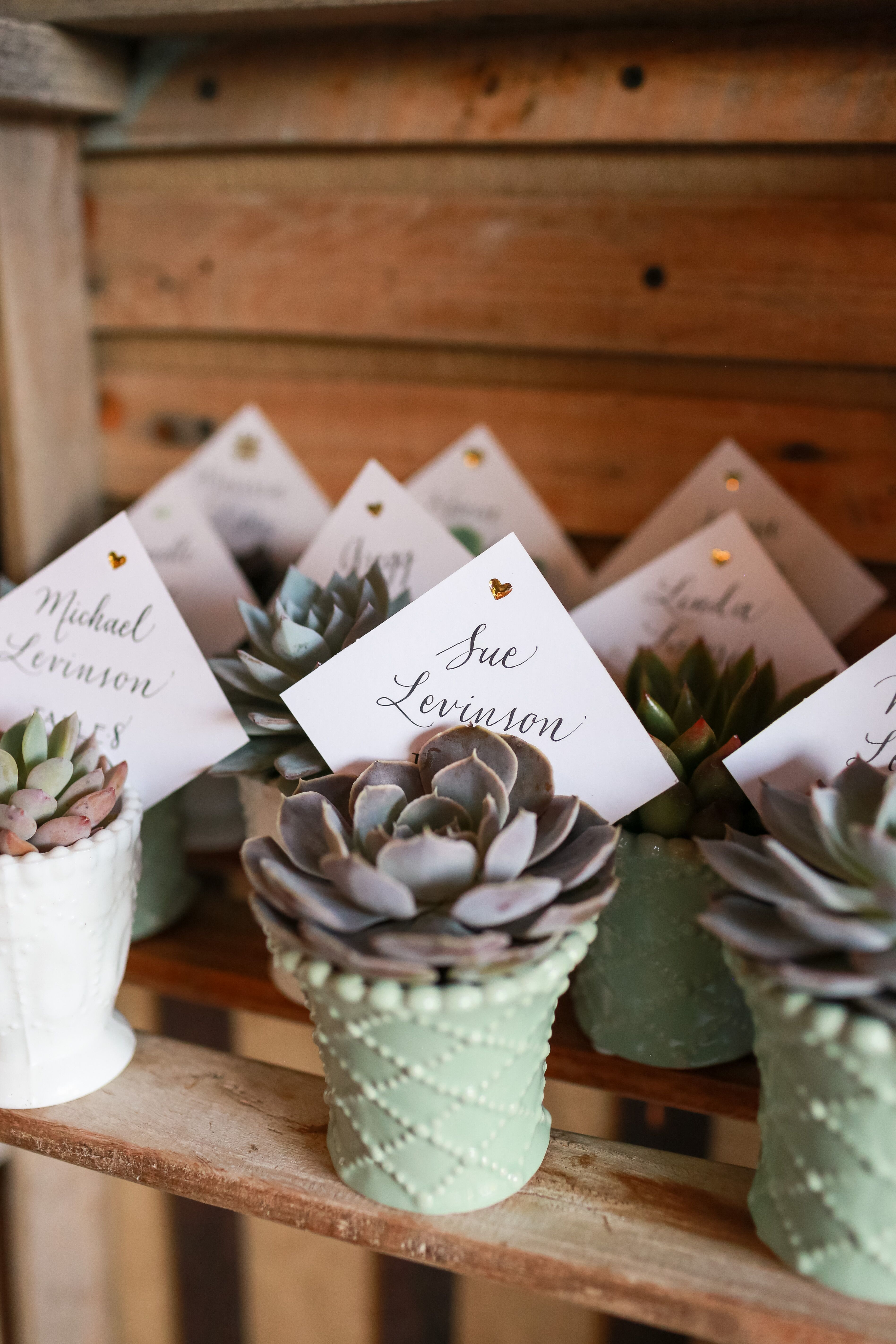 Succulent Place Cards And Wedding Favors