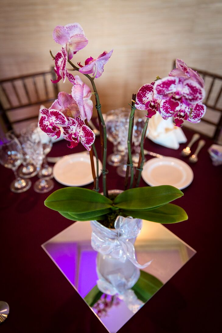 Purple orchids with leaves centerpiece