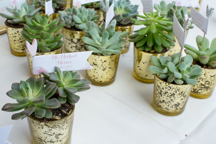 Succulent Wedding Favors as Escort Cards