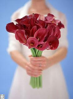 Red calla lilies in a bridal bouquet
