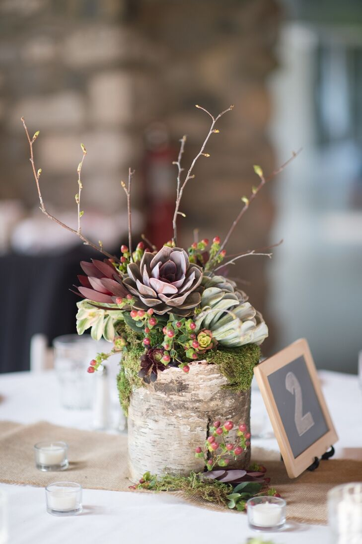 succulent and birch wood centerpiece