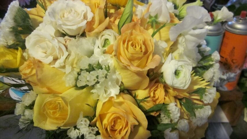 Maureen S Buffalo Wholesale Flower Market Buffalo Ny