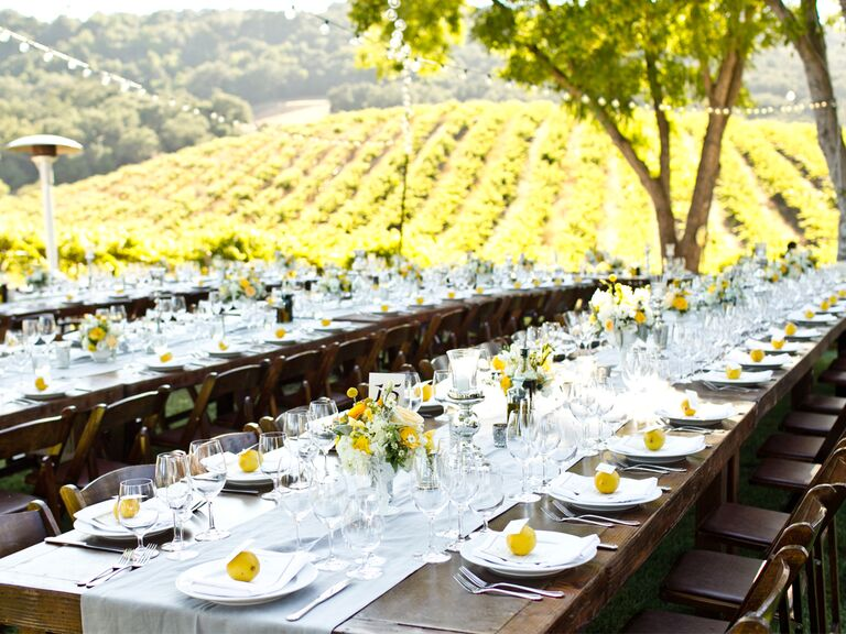 Wedding reception at vineyard