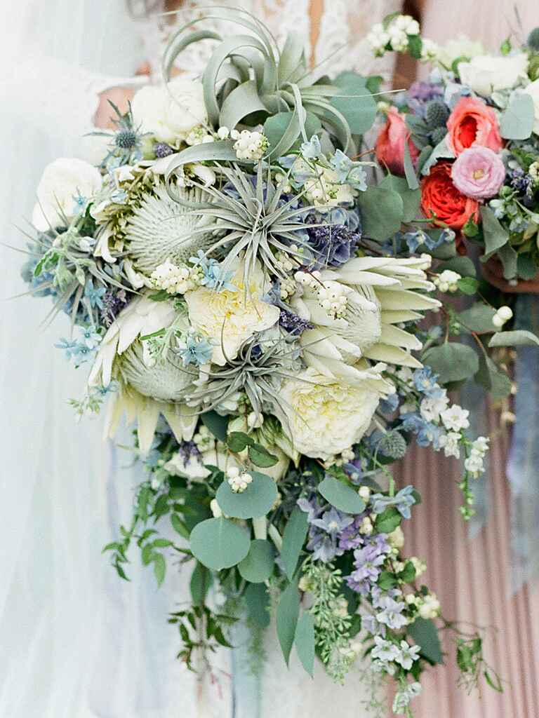 A cascading bridal bouquet with veronica, garden roses and air plants
