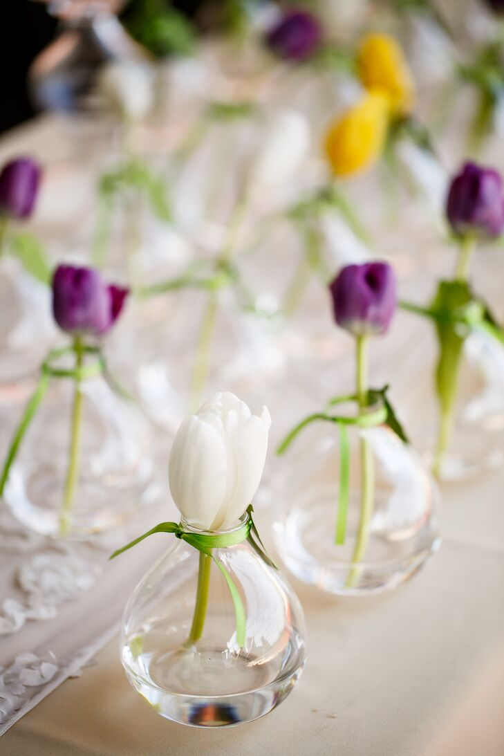 Tulip Wedding Favors