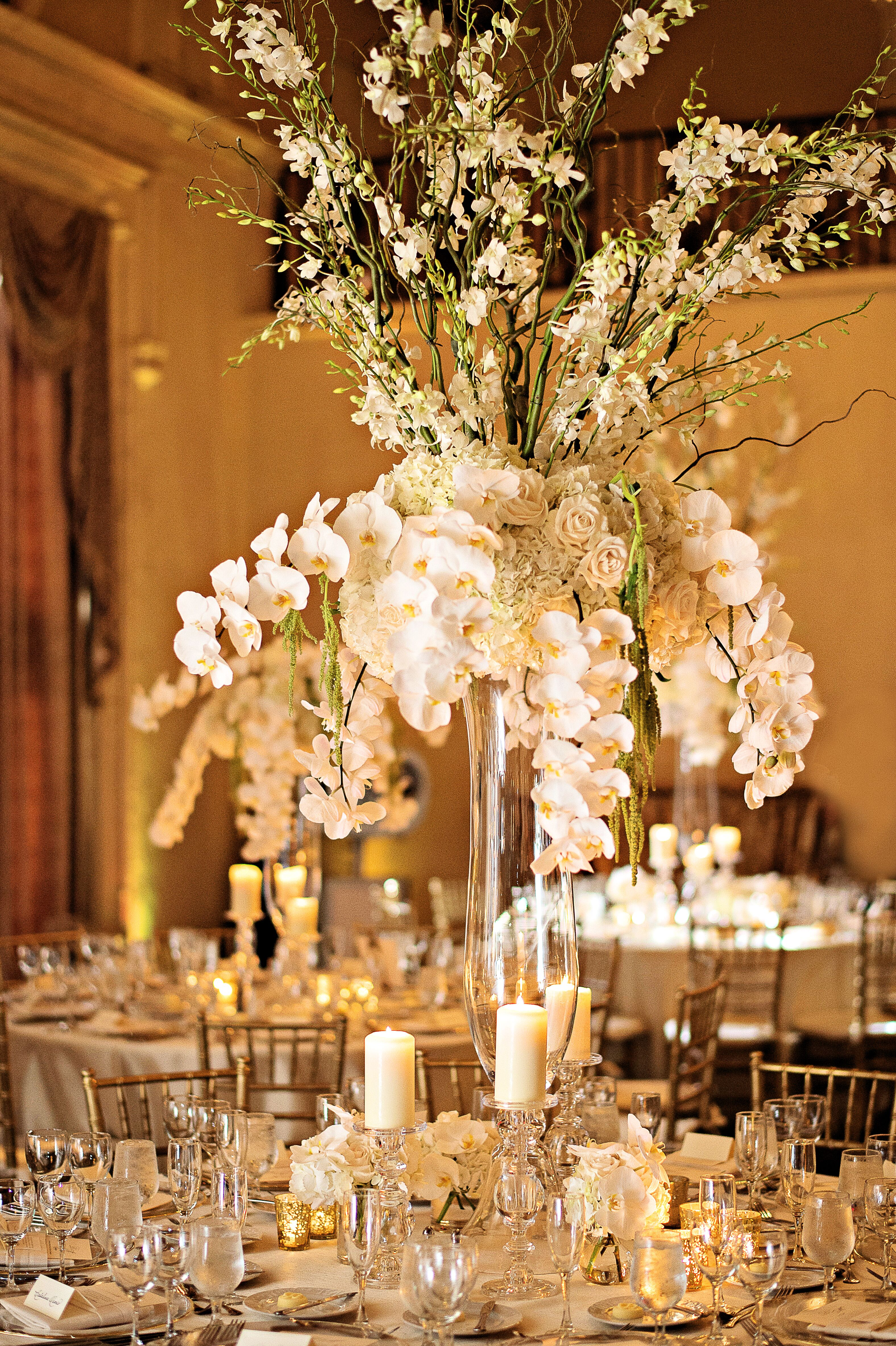 Natural All White Orchid Centerpiece