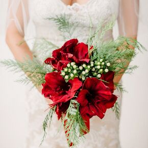 Winter wedding bouquets christmas inspired red amaryllis bouquet junglespirit Images