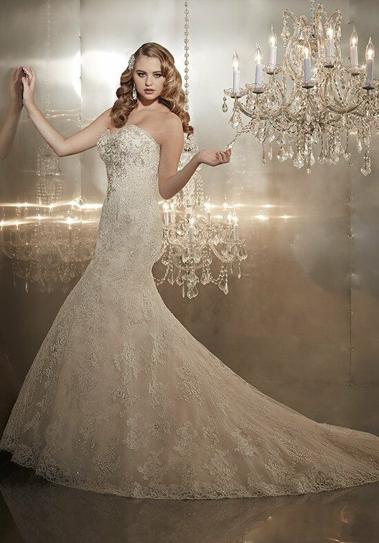 Christina Wu Style 15565 Wedding Dress photo