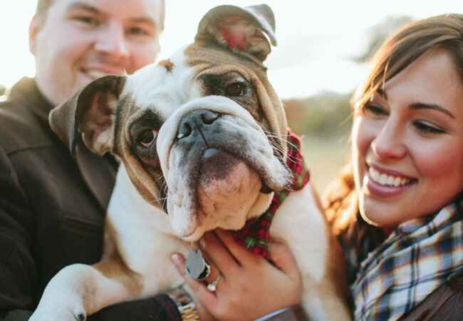 Engagement Photos with Dogs: Tracey Buyce Photography / TheKnot.com