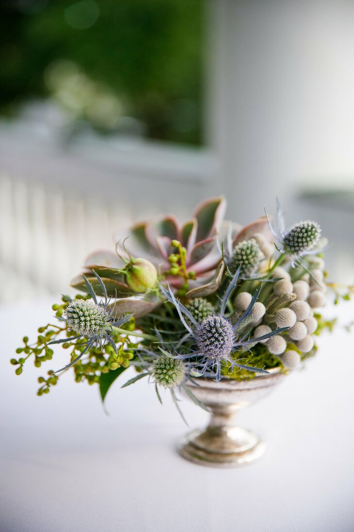 Succulent Silver Brunia And Thistle Centerpieces