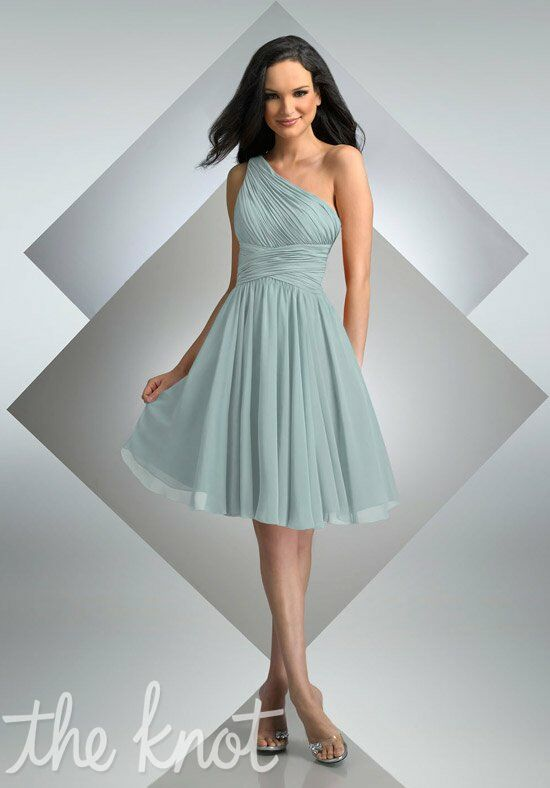 Bari Jay Bridesmaids 230 Bridesmaid Dress photo
